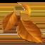 :fallen_leaf: