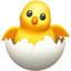 :hatching_chick: