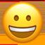 :grinning: